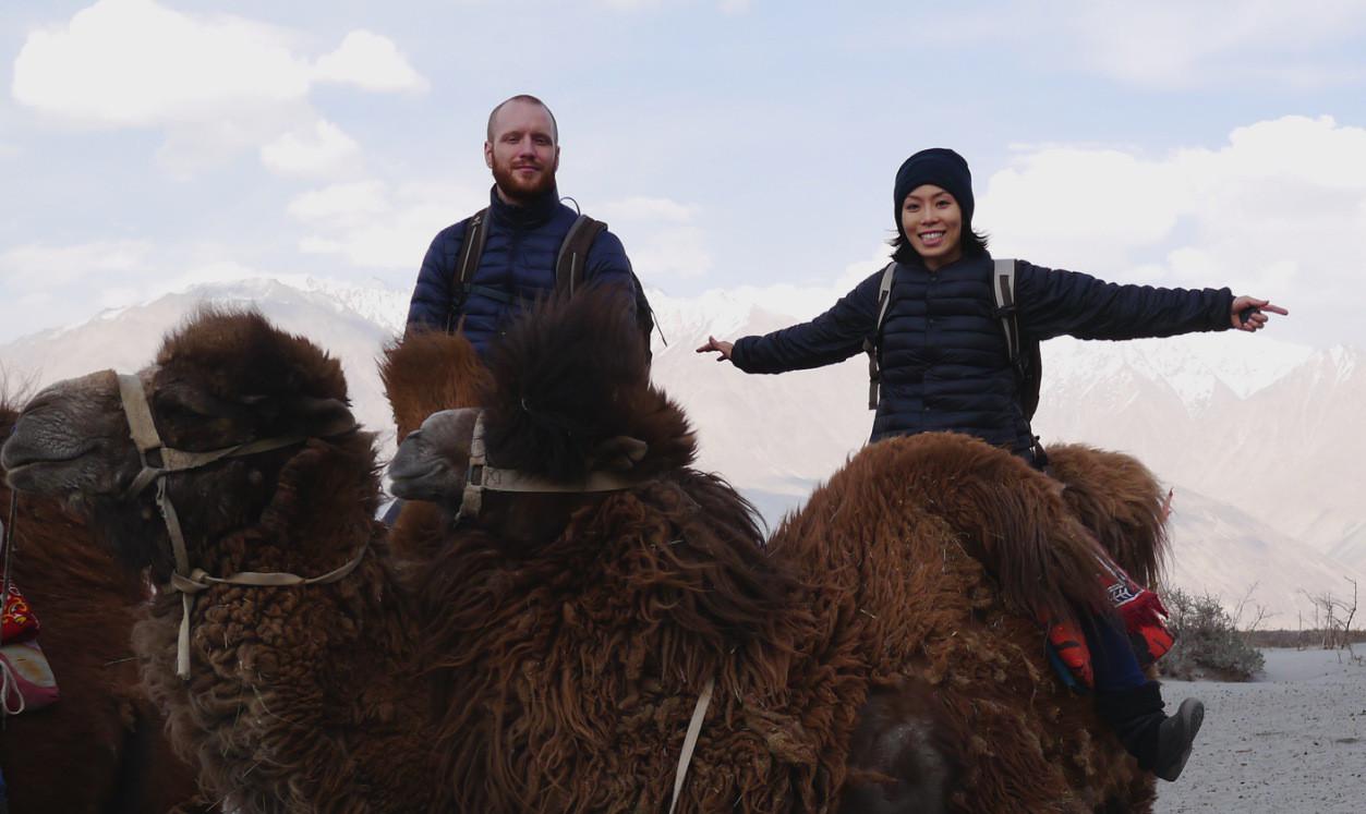 Camels, Kalashnikovs and New Year's Resolutions